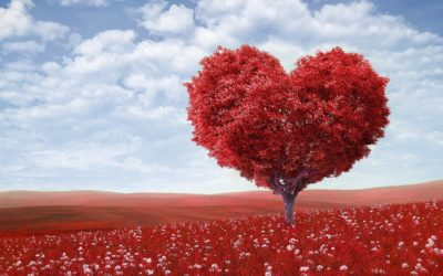 WORKSHOP: Way of the Heart for Wellbeing