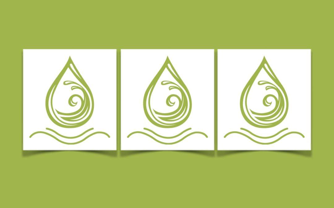 Tarot Card Readings – White Lotus 2020
