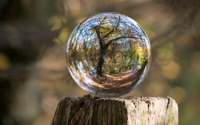 Meditation – Separation Creates Wholeness